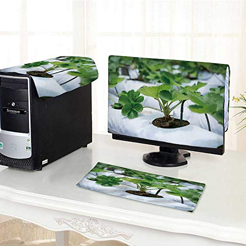 UHOO2018 Computer dustproof Three-Piece red Strawberry on Strawberry Plant at Cameron Highland Malaysia for LED LCD Screens Flat Panel HD Display /26