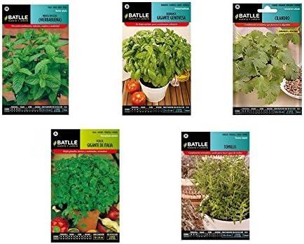 Semillas aromáticas lote 5 sobres (Hierbabuena, Albahaca, Cilantro ...