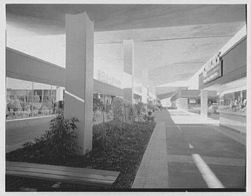 Photo: Cortez Plaza Shopping Center,Bradenton,Florida. Mall - Mall Bradenton