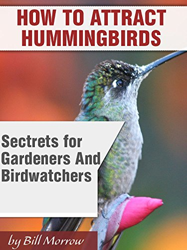 How To Attract Humminbirds To Your Yard Or Garden: Secrets For Gardeners & Birdwatchers by [Morrow, Bill ]