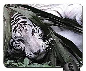 White tiger cub Mouse Pad, Mousepad (Cats Mouse Pad, 10.2 x 8.3 x 0.12 inches)