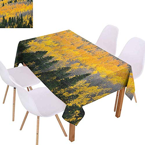 Marilec Elegance Engineered Tablecloth Fall Colorful Aspen Forest in Colorado Rocky Mountains Western Wilderness USA Theme Picnic W70 xL84 Green Yellow Grey
