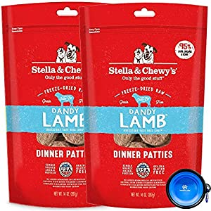 Stella & Chewy's Freeze Dried Raw Dinner Patties Dog Food 2 Pack (28oz Total) Bundle Including Hotspot Pet Travel Bowl - Made in The U.S.A (Lamb)