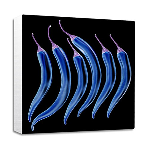 Style in Print Hot Chili Pepper Set Streched Canvas Wrap Frame Print Wall Décor - White Border, 16