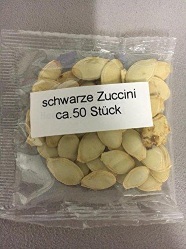 Samenquelle.de - der Samen Versand Calabacín negro, aprox. 50 semillas, bajo en calorías, rico en vitaminas, fácil de cultivar, da fruto después de 3 meses: ...
