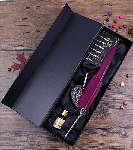 Ecvision Antique Feather Pen Set Metal Nibbed Calligraphy Pen Set Writing Quill  Wine Red