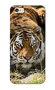 TYH - Cute High Quality Iphone 6 plus 5.5 Tiger Case Provided By Steverincon phone case