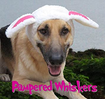 Amazon.com : Pampered Whiskers The Sheepish One sheep costume hat for XL dogs (19-26