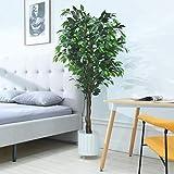 Cozy Castle Artificial Ficus Tree 72in - Artificial