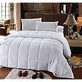 Royal Hotel's OVERSIZED KING Down-Alternative Comforter - Duvet Insert, 100% Down Alternative Fill