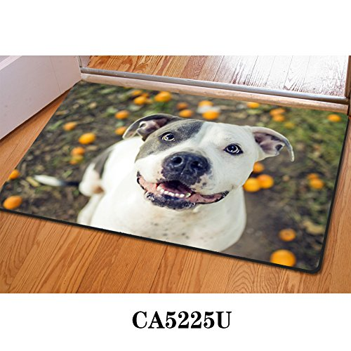 Instantarts Office Carpet Boston Terrier Breed Standard Design DoormatBathroom Door (Boston Terrier Breed Standard)