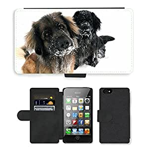 Super Stella Cell Phone Card Slot PU Leather Wallet Case // M00105443 Dog Snow Winter Fun Attention // Apple iPhone 4 4S 4G