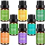 Essential Oils Set of 8,TASEYAR Therapeutic Grade 100% Pure Aromatherapy Scented Oil Gift Set(Frankincense,Lavender,Eucalyptus,Lemongrass,Peppermint,Sweet Orange,Tea Tree,Rosemary),10ml/Each