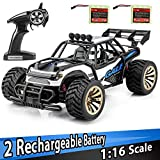 Best RC Cars - Distianert 1: 16 Scale Electric RC Car on Review