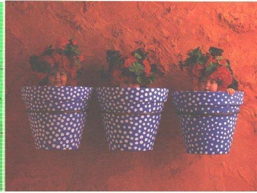 Anne Geddes 550 Piece Puzzle 24 X 18 - Three Blau & Weiß Polka Dott Flowerpots by Ceaco