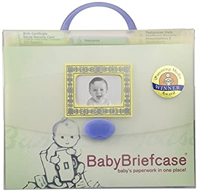 Baby Briefcase Baby Paperwork Organizer, Mint/Periwinkle | Learning Toys