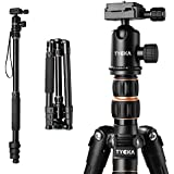 Tycka Compact Travel Tripod, support up to 12kg, with 360° ballhead (diam. 30mm), new leftwards flip-lock enhances safety and stability, 141cm Lightweight design, for Canon Nikon Sony cameras and more