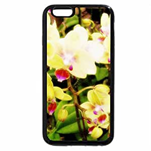 iPhone 6S Plus Case, iPhone 6 Plus Case, Flowers and Leafs 7