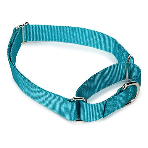 Bulk Lot Martingale Dog Collars at Wholesale Prices Nylon Collar Multi Packs(Light Blue - 10 to 16 Inch Collars)