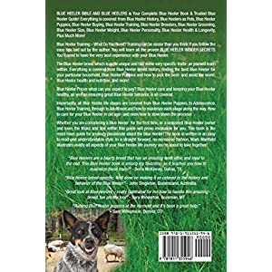 Blue Heeler Bible And Blue Heelers: Your Perfect Blue Heeler Guide Blue Heeler Dogs, Blue Heeler Puppies, Blue Heeler Training, Blue Heeler Grooming, ... Care, Blue Heeler Breeders, History, & More! 15