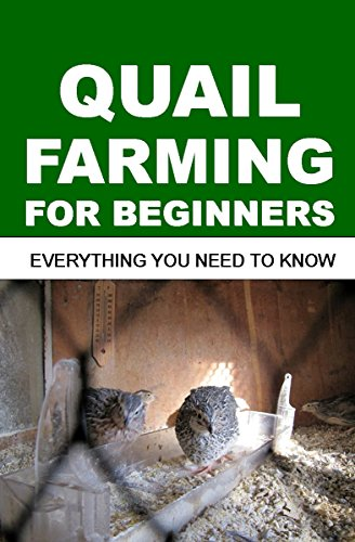QUAIL FARMING FOR BEGINNERS: Everything You Need To Know (Quail Crossings)