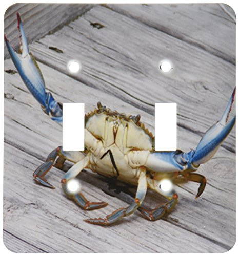 3dRose lsp_63150_2 Blue Crab Double Toggle -