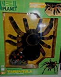 """Animal Planet Radio Control Tarantula [Watch out, it's a Giant Radio Control Tarantula coming your way! You can control the spider's movements and head straight toward your friends and family. Use the radio controller and watch the 8""""L x 9""""W tarantula scurry forward, back, and in circles. The furry texture and crawling movement make it seem just like a real spider. [colors may"""