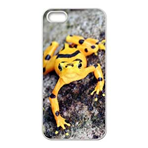 Diy Beautiful Frog Custom Cover Phone Case for iphone 5s White Shell Phone [Pattern-3]