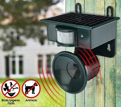 Amazon com : Flamingo Bonut Dog Pest Repellent Outdoor Garden PIR