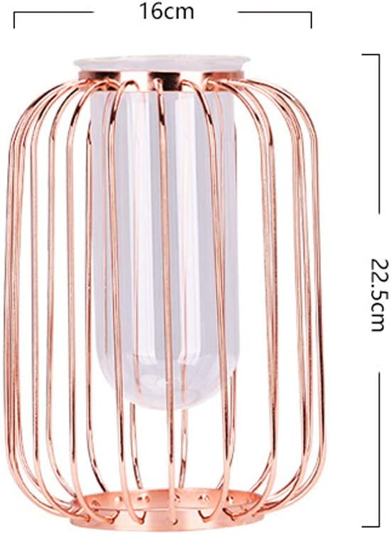 Plantes Terrariums XLGX Vase /À Fleur Vase en Verre Transparent Cylindrique Vase Design Tube avec Support M/étallique Id/éal pour Fleurs Or D/écoration de Mariage