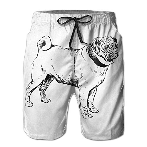 (JIA LI Men's Board Shorts Pug Embroidery Summer Printed Quick Dry Bathing Suits Swimwear Swim Trunks Beach Shorts)