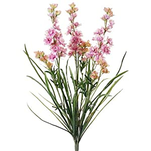 "24.5"" Delphinium Bush x3 Pink Cream (Pack of 12) 35"