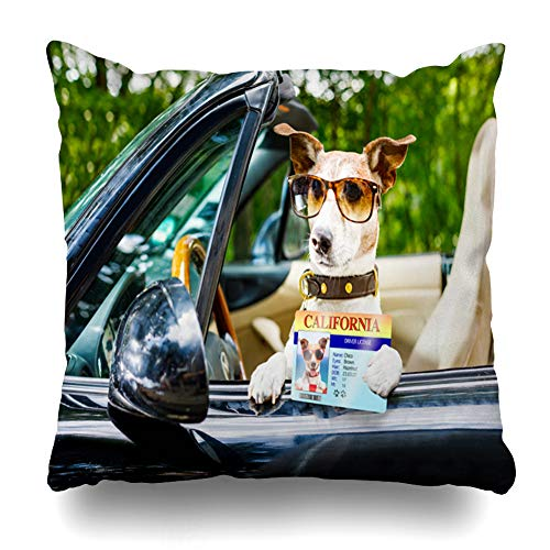 Ahawoso Throw Pillow Cover Square 16x16 Inches Terrier License Jack Russell Dog Car Close Steering Happy Sports Recreation Auto Automobile Belt Cushion Pillow Case Home Decor Zippered Pillowcase