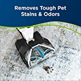 BISSELL Professional Pet Carpet Cleaner Shampoo, 48