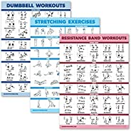3 Pack Dumbbell Exercise Poster + Resistance Bands Workouts + Stretching Exercises - Set of 3 Workout Charts [