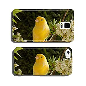 Springtime. canary bird on the branch. cell phone cover case iPhone5