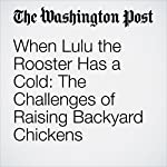 When Lulu the Rooster Has a Cold: The Challenges of Raising Backyard Chickens | Karin Brulliard