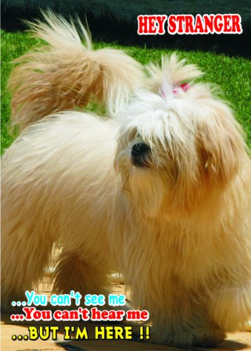 Lhasa Tank - Attention - Beware / Fun Sign Dog Lhasa Apso Dog for your home or house SF1729 Size A4