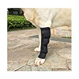 Dog Acl Knee Brace Canine For Elbow Hock Back Small Splint Wrap Puppy Arthritis Ankle Wound Care Pet Leg Prevent Support Surgery Orthopedic Heal Strap Joint Veterinarian Compression Pain,One PCS(XL)