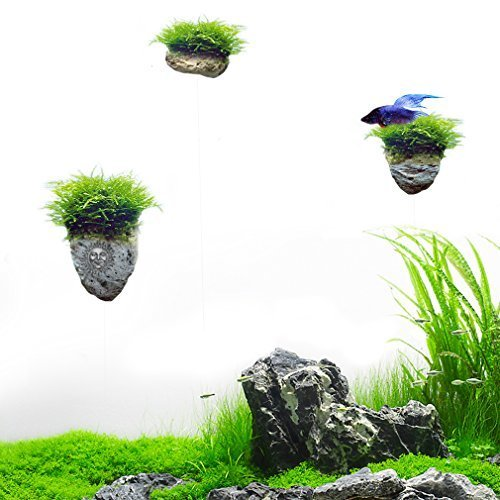 SunGrow Magical Hallelujah Floating Garden by Recreate Pandora, The Underwater World of Avatar in Aquarium in Minutes (Plants Sold Separately)
