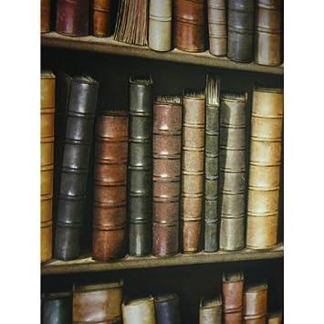 I Love Wallpaper Book Shelf Book Case Effect Wallpaper