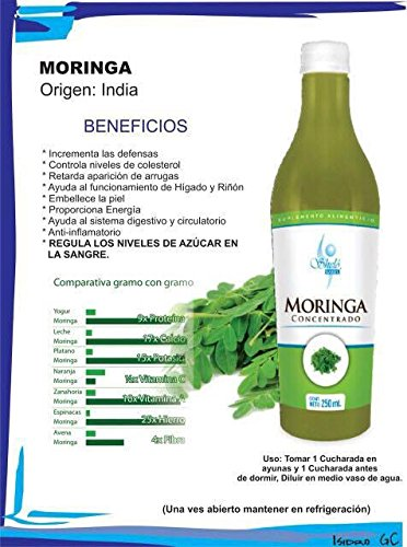 Amazon.com: Concentrado de Moringa Liquida / Moringa concentrate Ready to Drink: Health & Personal Care