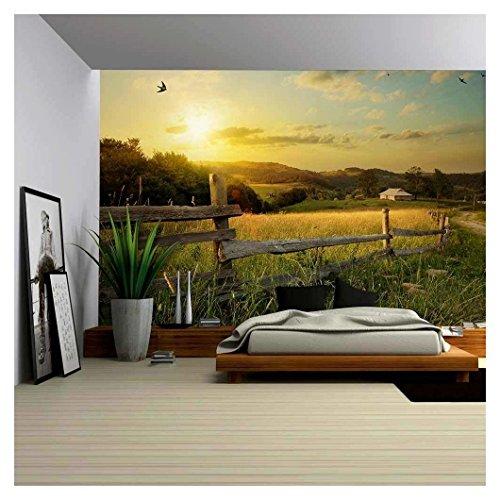 Art Rural Landscape Field and Grass