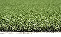Professional Synthetic Nylon Turf Practice Putting Green - 3 feet x 10 feet