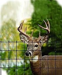 Tenax 2A120051 Economy Deer Control Fence, 4' x 165', Black