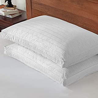 Basic Beyond Goose Down Feather Pillow - 2 Pack Luxury Gusseted Bed Pillows for Sleeping with 2 Pack 500TC 100% Cotton Pillow Protector YKK Zipper