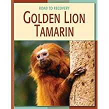 Golden Lion Tamarin (21st Century Skills Library: Road to Recovery)