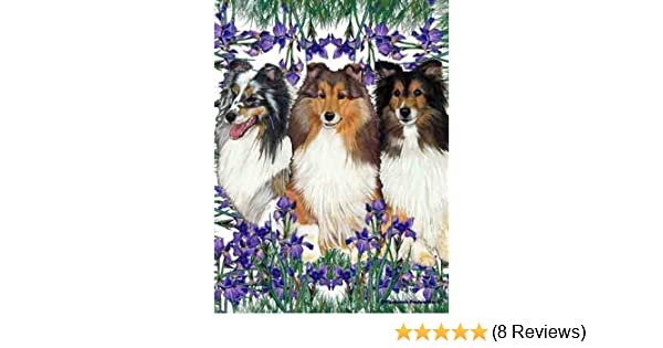 Sheltie Wood Welcome Outdoor Sign Tri