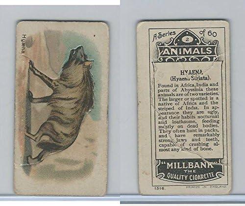 Tabacs Animaliers - Page 3 51j4wxKB6SL._AC_