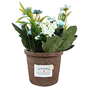 Evoio Artificial Potted Plants Daisy Flowers Bonsai Pastoral Mini Silk Flowers Home Kitchen Tabletop Office Desktop Decorations in Ceramics Base 3